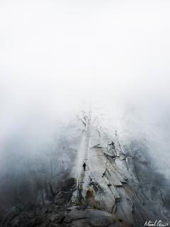 Half Dome Fog Cables