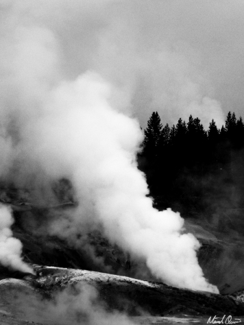 Yellowstone Moody