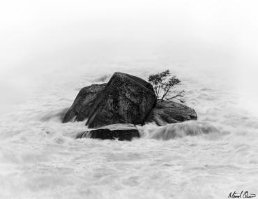 Yuba River Rocks