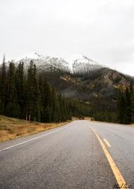 Aspen Roads