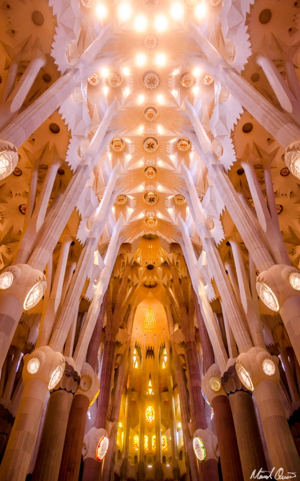 Barcelona La Sagrada Familia Ceiling