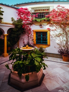 Córdoba Spain Courtyard