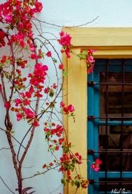 Córdoba Spain Window