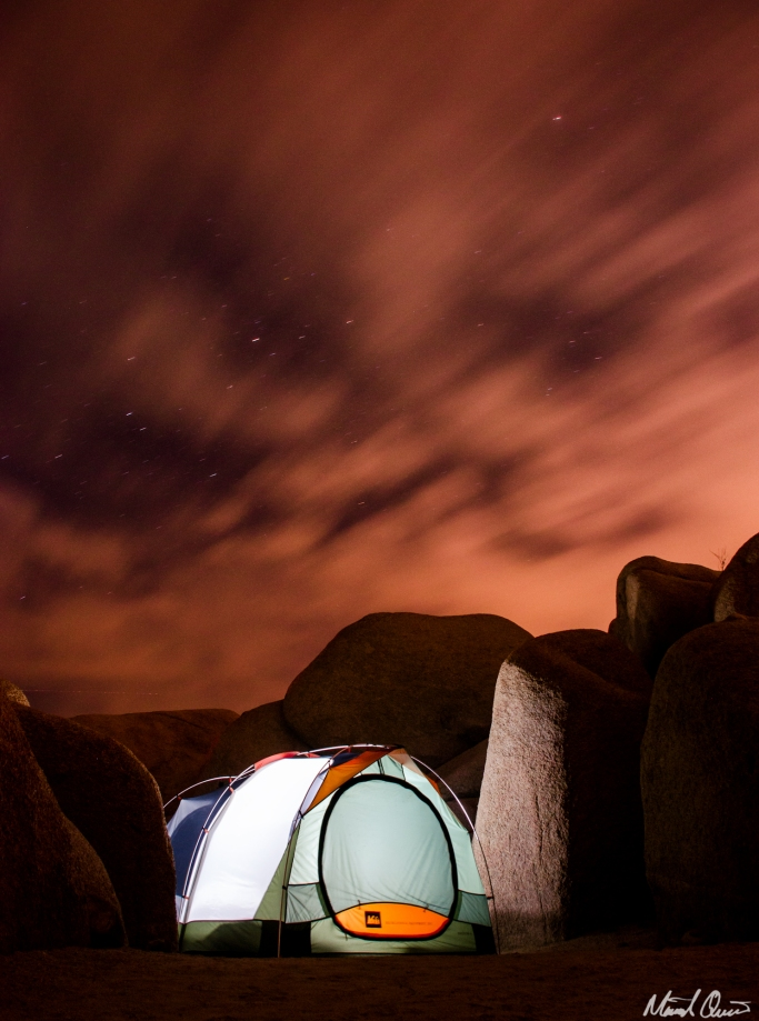 Joshua Tree Campground Night Sky