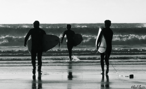 Northern California Surfer Group