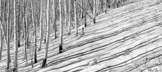 Park City Aspen Shadows