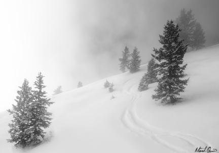 Park City Skiiing Powder