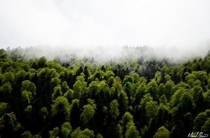 Pyrenees France Fog