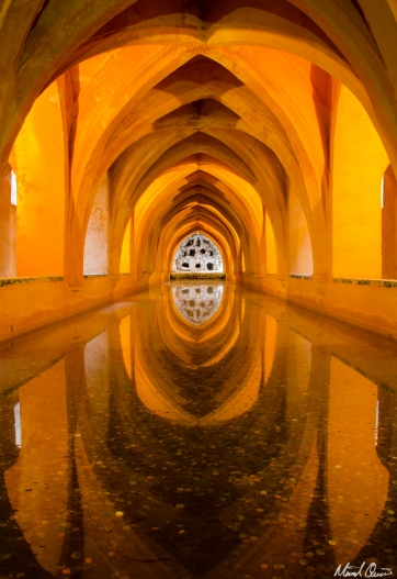 Seville Spain Alcazar Baths Reflection