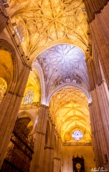 Seville Spain Cathedral Ceiling