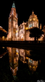 Toledo Spain Cathedral Night Reflection