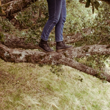 Tree Branch Walking