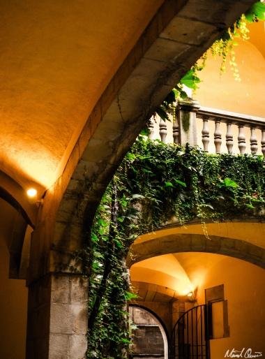 Barcelona Courtyard