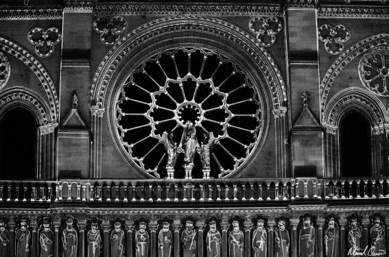 Notre Dame Lights