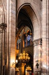 Notre Dame Rainbows
