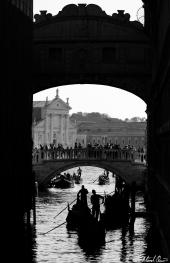 Venice Tourist Bridge