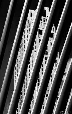 Westfield WTC Stripes